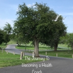 The Journey to Becoming a Health Coach