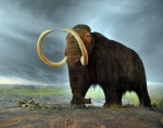 Woolly Mammoth Fear